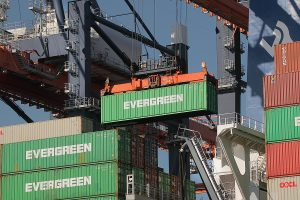 Work Wisely With These 4 Hard-Hatted Safety Tips For Container Unloading