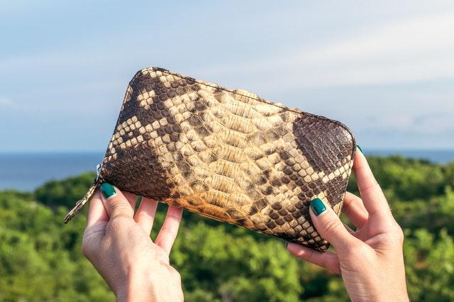 beloved mesh purse